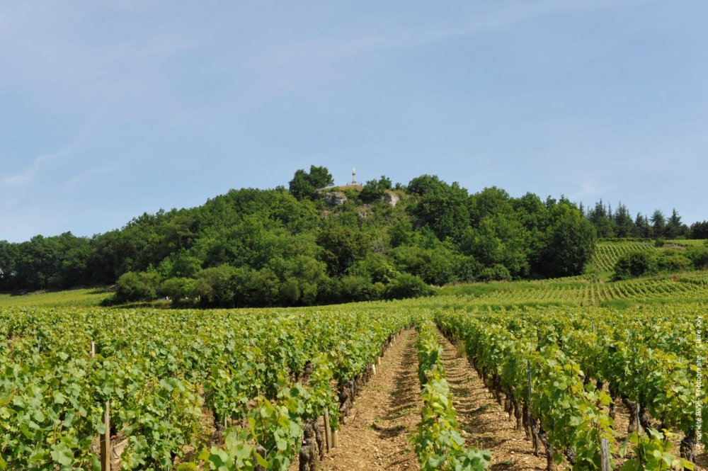 Givry vin rouge